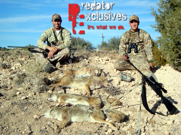 Guided Arizona Predator Hunts