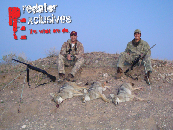 Guided Predator Hunts