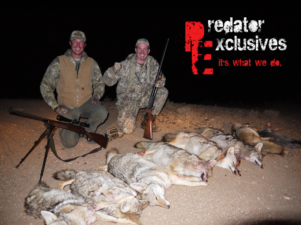 Arizona Predator Hunts