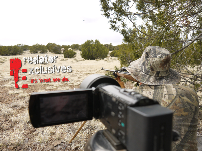 Filming our guided coyote hunts.
