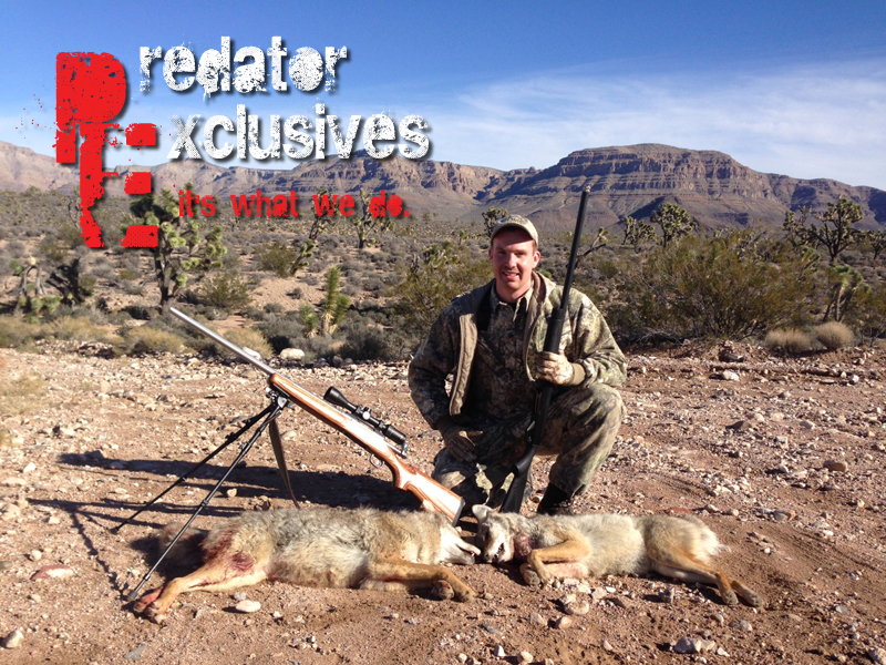 Ian with another shotgun coyote in Arizona.