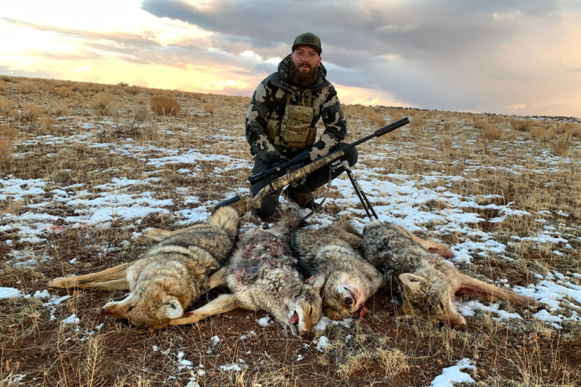 The Best Caliber for Coyote Hunting